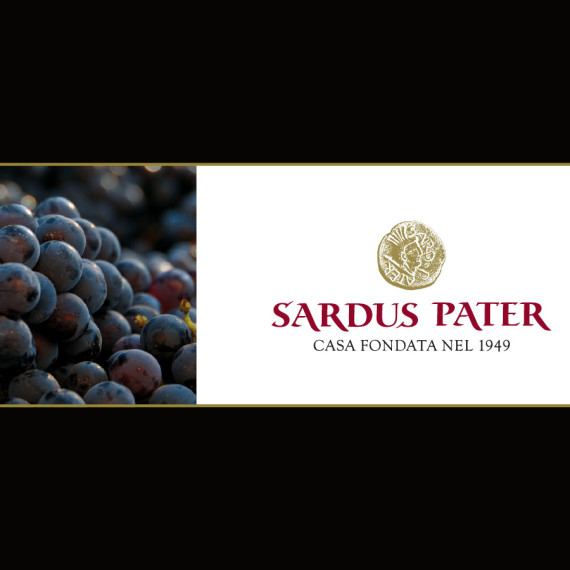 SARDUS PATER1 COVER BROCHURE